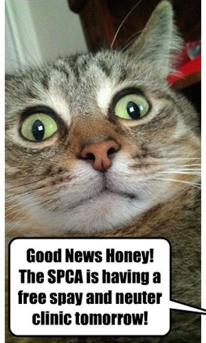 Good News Honey!  The SPCA is having a free spay and neuter clinic tomorrow!