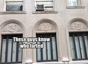 These guys know who farted