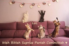 LoL Itteh Bitteh Suprize Parteh Committeh ♥