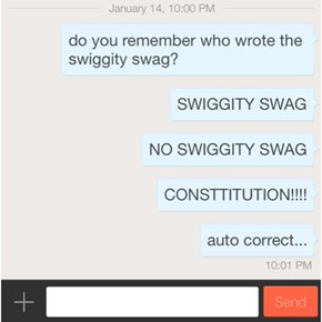 The Constituton of Swiggity Swag