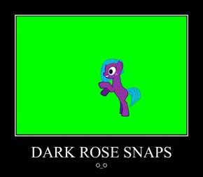 DARK ROSE SNAPS