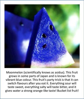 Internet Hoax of the Day: Japanese 'Moon Melon' is Only Wishful Thinking