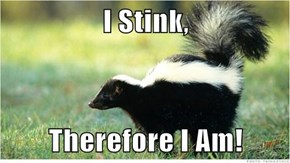 Philosophical Skunk
