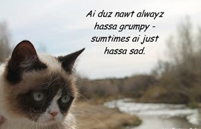 Sumtiimes kittehs iz so misunderstood...