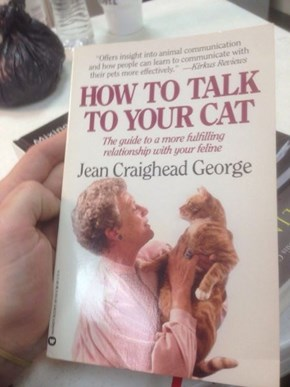 The Crazy Cat Lady's Bible