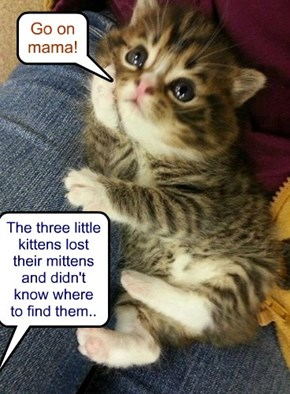 The three little kittens lost their mittens and didn't know where to find them..
