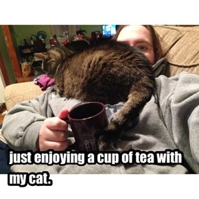 just enjoying a cup of tea with my cat.