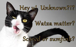 Hey u!  Unknown?!? Watza matter? Scared or sumfink?