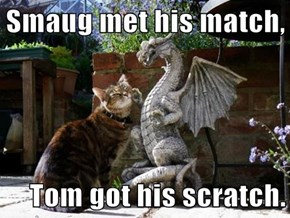 Smaug met his match,  Tom got his scratch.