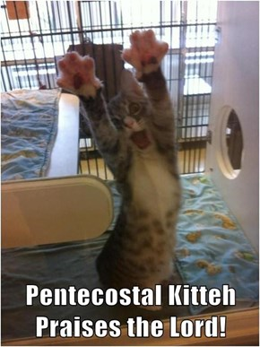 Pentecostal Kitteh Praises the Lord!