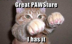 Great PAWSture  I has it