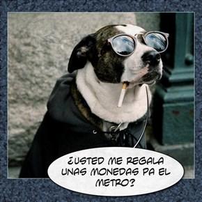 subo al metro