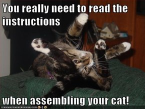 You really need to read the instructions  when assembling your cat!