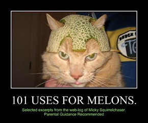 101 USES FOR MELONS.
