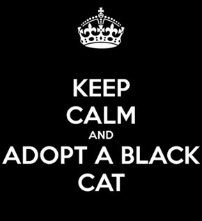 Keep Calm And Adopt A Black Cat.