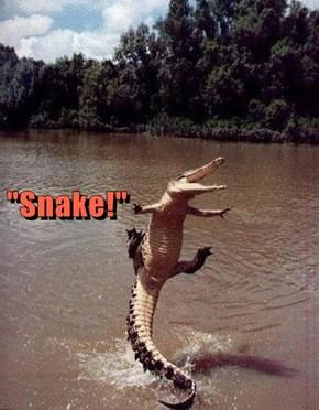 """""""Snake!"""""""