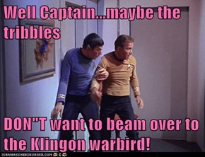 "Well Captain...maybe the tribbles  DON""T want to beam over to the Klingon warbird!"