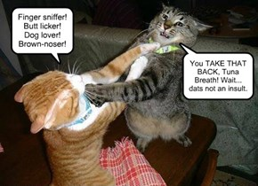 Cat Insults