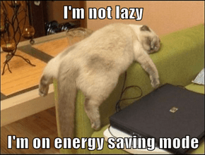 I'm not lazy  I'm on energy saving mode