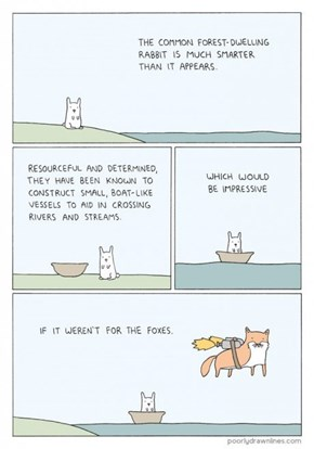 The Unappreciated Craftiness of Animals