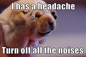 I has a headache  Turn off all the noises