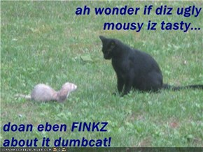 ah wonder if diz ugly mousy iz tasty...  doan eben FINKZ                      about it dumbcat!