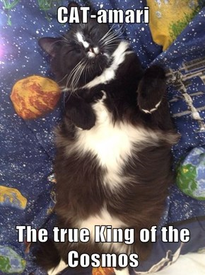 CAT-amari  The true King of the Cosmos