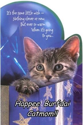 Happee  Burfdai Catmom!!