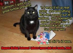 Hope yu'r havin a great Birfdai, Catmom!