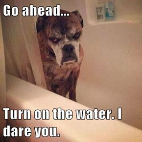 Go ahead...  Turn on the water. I dare you.