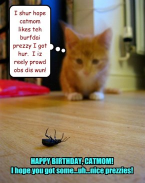 I shur hope catmom likes teh burfdai prezzy I got hur.  I iz reely prowd obs dis wun!