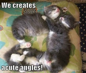 We creates  acute angles!