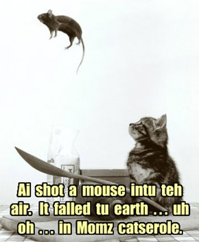Ai  shot  a  mouse  intu  teh  air.   It  falled  tu  earth  . . .  uh  oh  . . .  in  Momz  catserole.