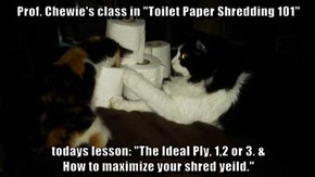 "Prof. Chewie's class in ""Toilet Paper Shredding 101""  todays lesson: ""The Ideal Ply, 1,2 or 3. &                                           How to maximize your shred yeild."""