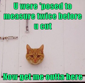 U were 'posed to measure twice before u cut  Now get me outta here