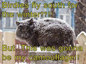 Birdies fly south for the winter??!!  But..This was gonna be my camouflage!!