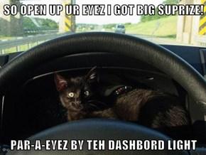 SO OPEN UP UR EYEZ I GOT BIG SUPRIZE!  PAR-A-EYEZ BY TEH DASHBORD LIGHT