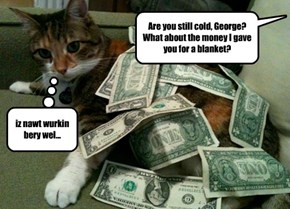Why we don't pay cats in cash.