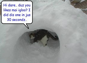KKPS Skolar Roscoe is eggspected to do well in teh Igloo Building Competition at teh Winter Olimpix..