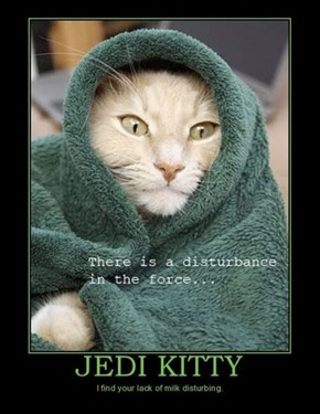 No, Because Milk Makes Jedi Kitty Gassy
