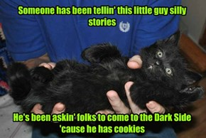 Even black kittehs get caught up in the stories