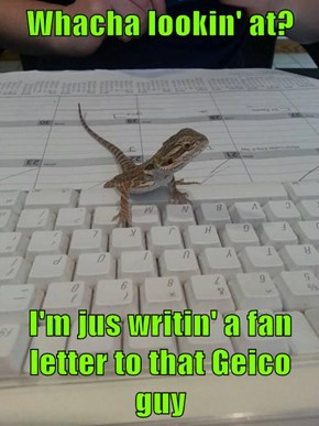 Whacha lookin' at?  I'm jus writin' a fan letter to that Geico guy