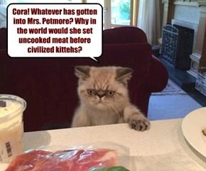 The Dowager Countess of Catham iz not amused