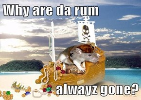 Why are da rum  alwayz gone?
