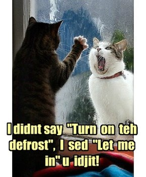 "I didnt say  ""Turn  on  teh defrost"",  I  sed  ""Let  me in"" u  idjit!"