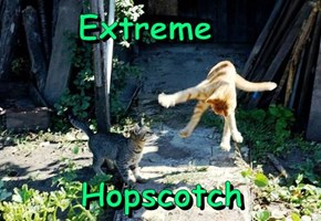 Extreme                  Hopscotch