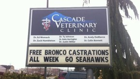 Washington Veterinarian Willing to Take on a Bronco in Honor of the Super Bowl
