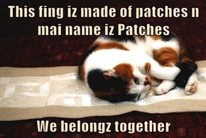 This fing iz made of patches n mai name iz Patches  We belongz together