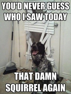He Also Bashed the Door in...