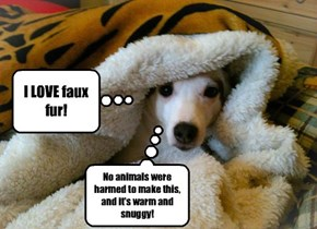 Ban Fur Sales!
